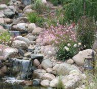 Hillside Water Oasis