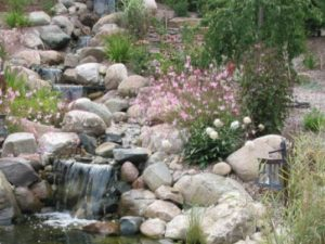 Hillside Water Oasis