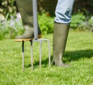5 Early Fall Lawn Tips