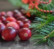 Kid-Friendly Outdoor Christmas Decor