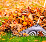 Tips & Tricks on How To Rake 'Em Up This Fall